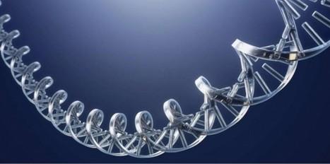 L'ADN va-t-il remplacer les disques durs ? | Veille Lettres et Numérique - Académie de Nice | Scoop.it