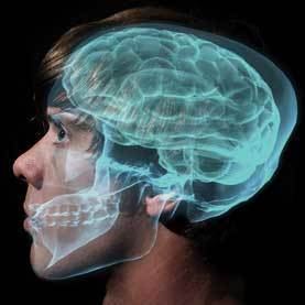 Brain researchers can detect who we are thinking about | Gavagai | Scoop.it