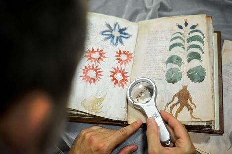 Tiny Spanish publisher clones world's most mysterious book | Erba Volant - Applied Plant Science | Scoop.it