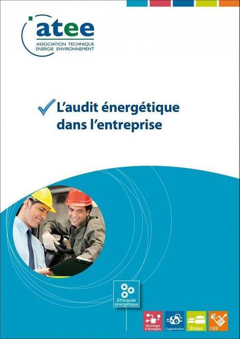 Gestion de l'éclairage : économies d'énergie, sécurité, confort, maintenance | Atee - Association Technique Energie Environnement | conférence expos développement durable énergie | Scoop.it