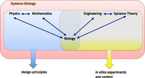The Physics behind Systems Biology | Complexity & Systems | Scoop.it