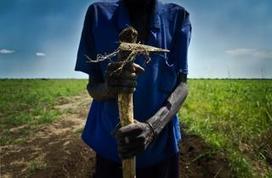 Monsanto fait main bassesurles BigData pour conquérir le monde | Questions de développement ... | Scoop.it