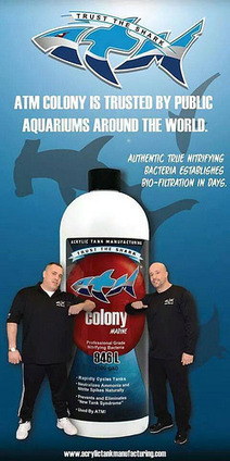 Reef Tanks Foru | Hydra Forum | Scoop.it