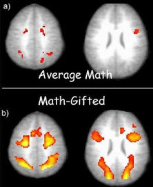 Neurolearning: Mathematical Minds | Social Neuroscience Advances | Scoop.it