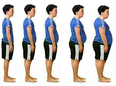 La Jornada: Obesidad y sanidad pública | Técnico en Cuidados Auxiliares de Enfermería | Scoop.it