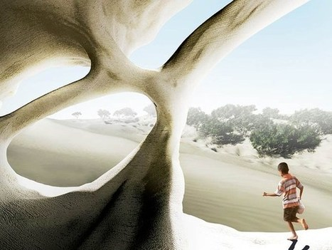 Turning dunes into architecture | Extended Mind | Scoop.it