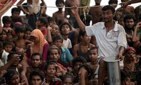 '#Rohingya immigrant stranded crisis is not an isolated tragedy' | News You Can Use - NO PINKSLIME | Scoop.it