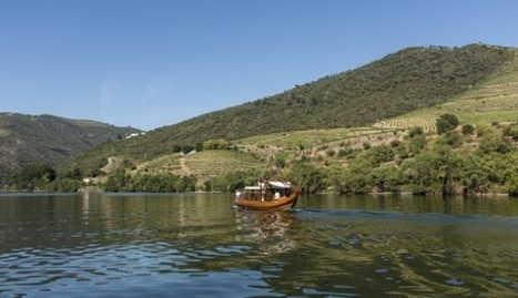 A hop through the vineyards of Portugal's stunning Douro Valley | Vitabella Wine Daily Gossip | Scoop.it