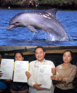 Dolphin export barred - Manila Standard Today | Makamundo (Earthly) | Scoop.it