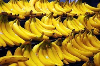 Des bananes en lutte contre les parasites | Nature : beauty, beasts and curiosities... | Scoop.it