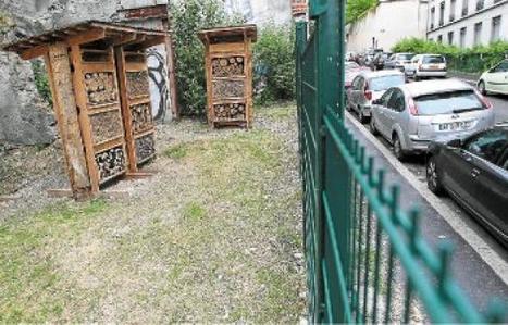 Les abeilles font leur nid en ville | Urbanisme vivant | Scoop.it