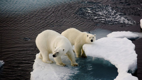 Petition: Help end climate change denial in the media | Climate change and the media | Scoop.it