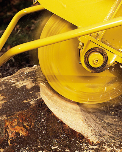 Do-It-Yourself Tree Stump Grinding | Stump Grinding Knowledge | Scoop.it