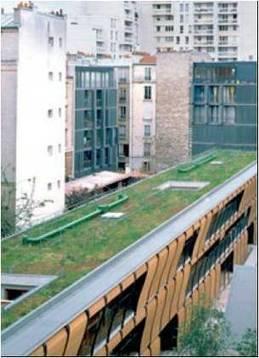 Programme de végétalisation urbaine - PCET de la Ville de Paris | Immobilier | Scoop.it