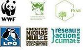 Conseil des ministres de l'agriculture : une incompréhensible régression sur les enjeux environnementaux et climatiques / Actualités / S'informer - WWF France | écolo | Scoop.it
