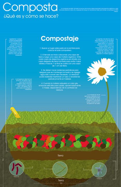 Cómo se hace el compost #infografia   Lombrihumus de Pirineo   Scoop.it