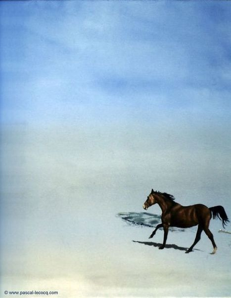 CHEVAL EPI - Horse Groin -  oil on canvas by Pascal | Art by Pascal, The painter of Blue® | Scoop.it