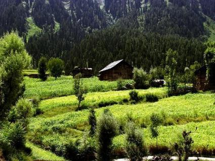 Kashmir Tour Packages - Explore the Beauty of Kashmir by Devendra Singh | India Tour Packages | Scoop.it