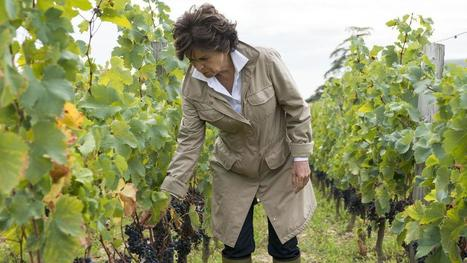 French Châteaus Come With Their Own #Wine Teams | Vitabella Wine Daily Gossip | Scoop.it