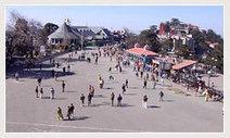 About Shimla in Himachal Pradesh   himachaltourpackages.in   Himachal Tourism Guide   Scoop.it