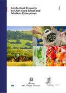 Guies I+I - Propietat intel·lectual al sector agroalimentari i PIMEs   Ulldecona desenvolupament econòmic   Scoop.it