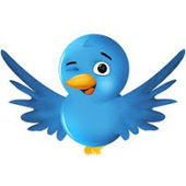 A gentle introduction to Twitter for the apprehensive academic | Social media & academia | Scoop.it