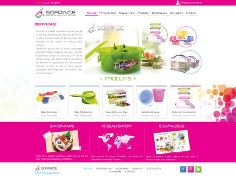 Références Agence Cresus: Développement du site web Sofpince   Cresus web   Scoop.it