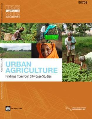 Urban Agriculture : Findings from Four City Case Studies | Chimie verte et agroécologie | Scoop.it