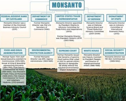Obama Monsanto Connection | Organic Skincare and Cosmetics | Scoop.it