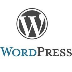 5 questions à se poser avant installation d'un plugin WordPress | Communication - Marketing - Web | Scoop.it