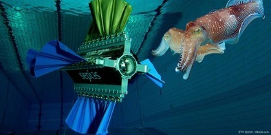 Robotic squid and honeycomb turbines | Innovation in Oceanography | Scoop.it