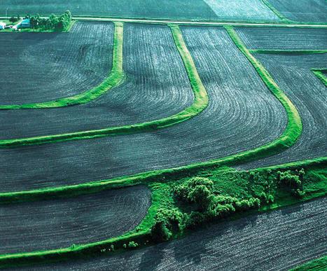 Rolofaca® ou la conservation des sols - DEFI-Écologique : le blog   AC Agriculture de Conservation   Scoop.it