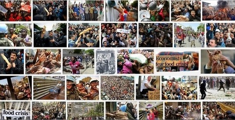 Governance and Development: The politics of the gut and a recipe for riot | Food riots & food rights - a research project | Scoop.it