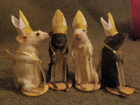 Taxidermied Mice Chess Set | prettyawfulthings | Taxidermy anthropology | Scoop.it