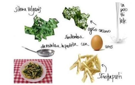 Fare orto in balcone o terrazzo: Cucina naturale: la ricetta d'erbe commestibili   Come fare l'orto in balcone o terrazzo, consigli e idee   Scoop.it