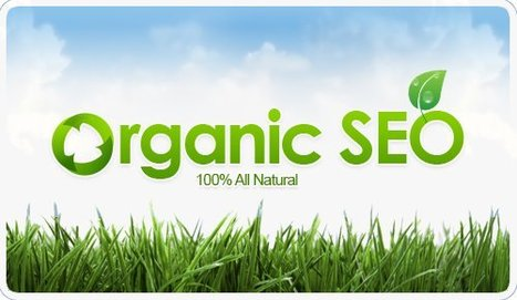 SEO in India, Profit By Search is Offering Discounts on SEO Plans ... | Organic Seo Expert | Scoop.it