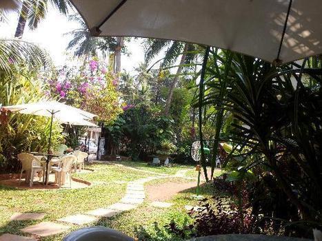 Farmhouse for wedding in Gurgoan(NCR) | Rent Me A Farm | Scoop.it