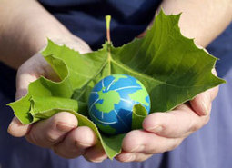 Sustainable Living | Self Sufficiency | Sustainability & Survival | Touching the Earth Lightly | Scoop.it