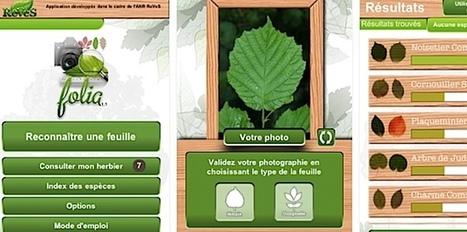 Conception d'applications ludo-éducatives mobiles en botanique – Ludovia Magazine | SeriousGame.be | Scoop.it