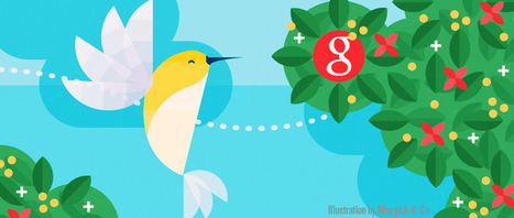 Hummingbird: Move Over Caffeine, Hello Sweet Nectar | Search Engine Optimization Without the Technobabble | Scoop.it