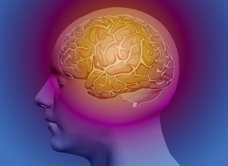 Head Trauma Linked to Same 'Plaques' Seen in Alzheimer Patients   California Brain Injury Attorney News   Scoop.it
