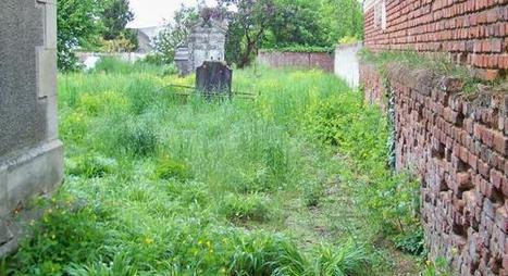 ROYAUCOURT La commune pionnière pour une nature plus propre | Labyrinthes pédagogiques | Scoop.it