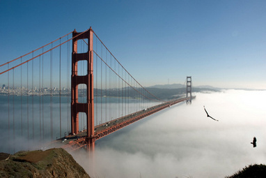 San Francisco Bus Tours | Tripedition | Your Online Travel Agency | Scoop.it