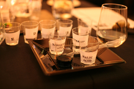The Science of Taste & Flavour - Disaronno Mixing Lab - Marsala, Sicily | Students in Food Science | Scoop.it