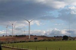 La eólica hunde los precios del mercado mayorista de electricidad | estamosimplicados.com | Autoconsumo | Balance Neto | Ahorro y Eficiencia Energética | Scoop.it
