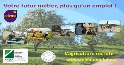 Sans expérience, vous voulez travailler... - Emploi agriculture - AREFA Basse-Normandie | Facebook | Emplois en Normandie | Scoop.it
