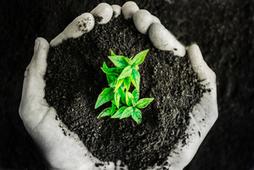 Sustainability: Beyond Compliance, Towards Value Creation   Procurement   Scoop.it
