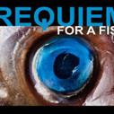 Les poissons détournent les affiches de films pour promouvoir la pêche durable | Geekness | Scoop.it