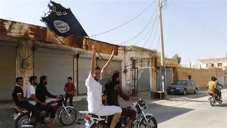 ISIS and the New Middle East Cold War | Upsetment | Scoop.it