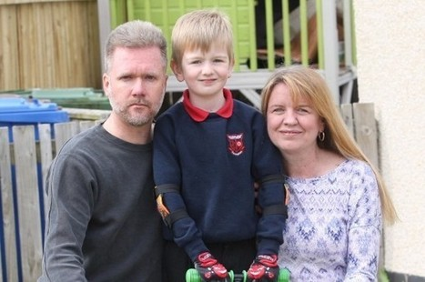 Last-ditch hope for Australian family the Brains after distillery's job offer   Politics Scotland   Scoop.it